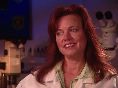 Forensic Files – Season 10, Episode 23: Prints Among Thieves